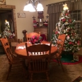 My House at Christmas 2013 Preview