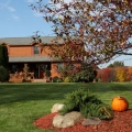 Something to Crow About Preview