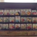 Antique seed box Image 1