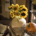 Amazing Autumn Decorating Ideas Preview
