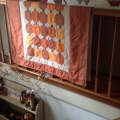 Pumpkin quilt Preview